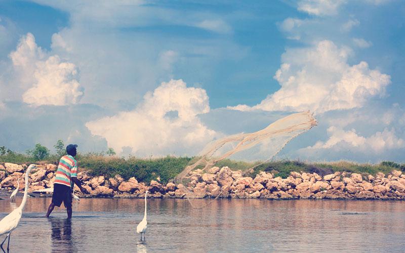 Biodiversidad Cartagena