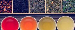 Ruta gastronómica del té en Bogotá
