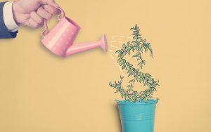 Inversionistas generando mayores ingresos