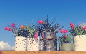 tarros convertidos en flores