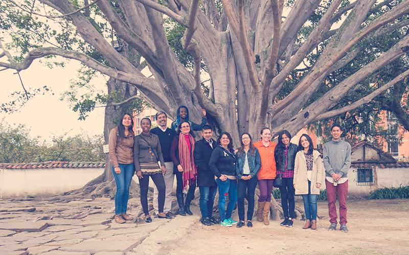 Colombianos en un árbol, generando liderazgo colectivo