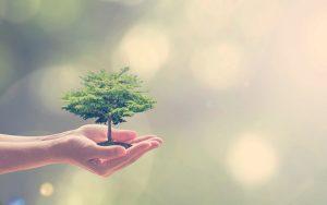 Persona teniendo en sus manos el planeta Tierra