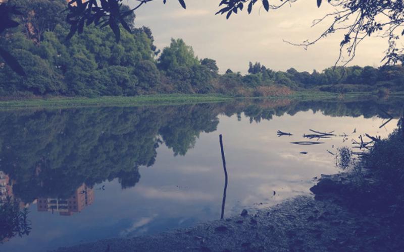Humedal Cordoba