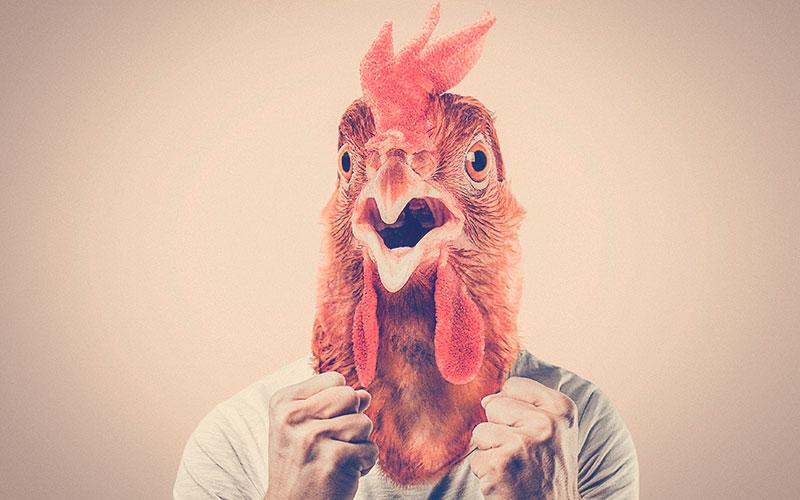 Persona con la máscara de un gallo