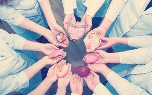 órganos para salvar vidas
