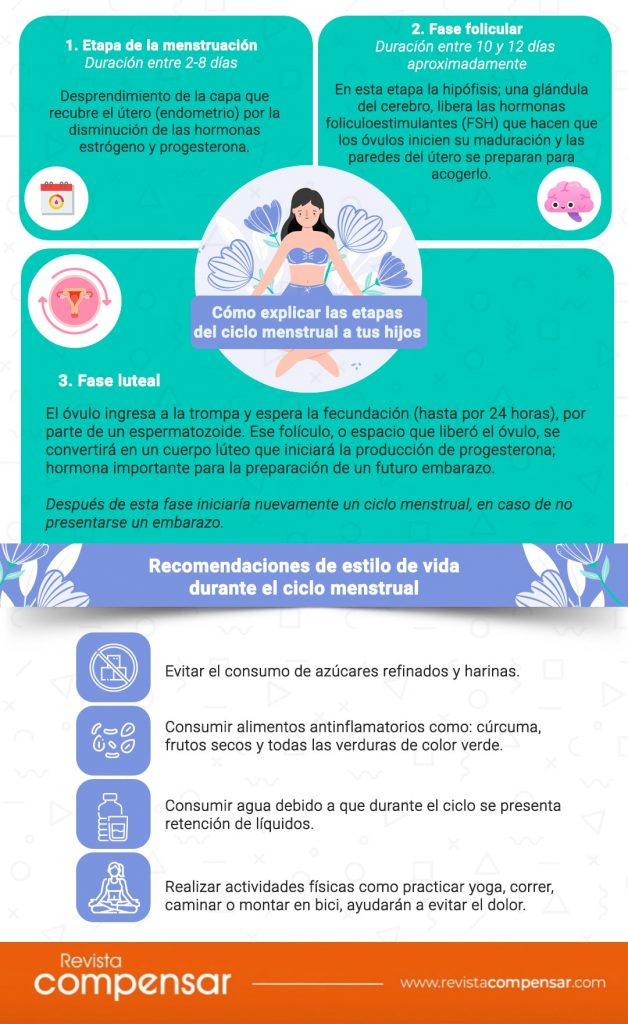 Infografía Menstruación